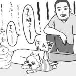 【キラリ!疑いの目を光らせて!めいのボディーデザインダイエット 】第2話